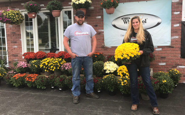 ... Haines And Sales Representative Ashley Pelletier Set Up The Fall Floral  Display At The Caribou Business, Which Is Opening A New Garden Center This  Fall.