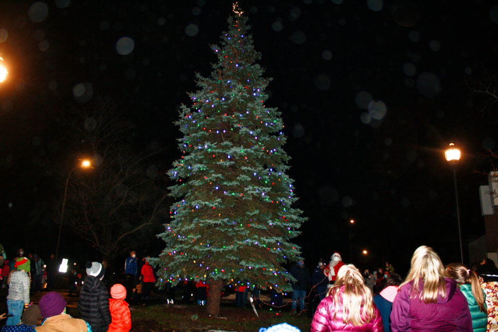 'Santa's reindeer' special guests at Caribou Christmas tree lighting - The County